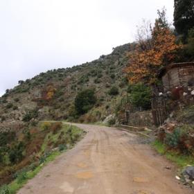 Aritzo strada per Funtana Cungiada