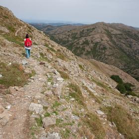 Lungo il sentiero, sotto Punta Paulinu