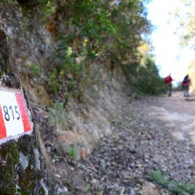 Lungo il sentiero 815