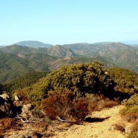 Scorcio verso i monti di Burcei e Punta Serpeddì