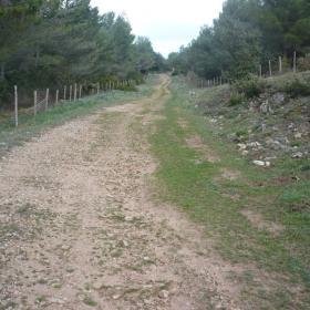 Sentiero 262 - Sa bia de is caminantis
