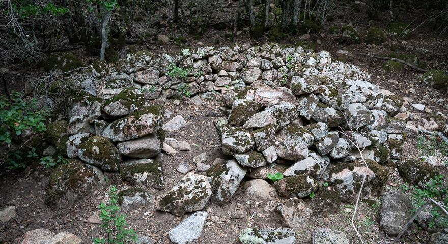 Resti di antichi ovili nel bosco