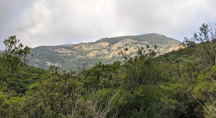 Le falesie del m.Arcosu viste dal sentiero in località Paddera
