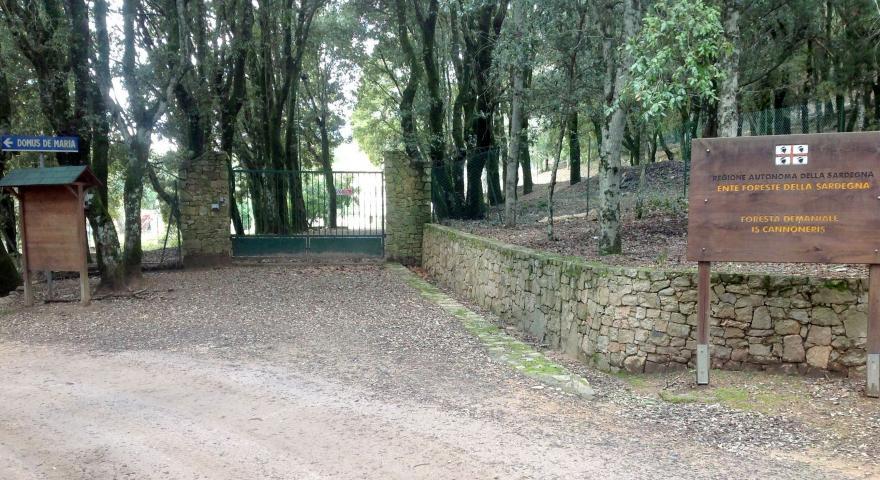 arrivo del sentiero 200 (ingresso della casa forestale di Is Cannoneris)