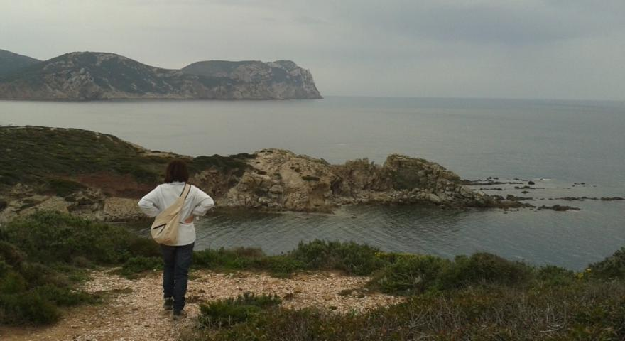 Sentiero Porto Ferro - le Prigionette: tappa 7 (oltre Cala del vino, Capo caccia in vista)