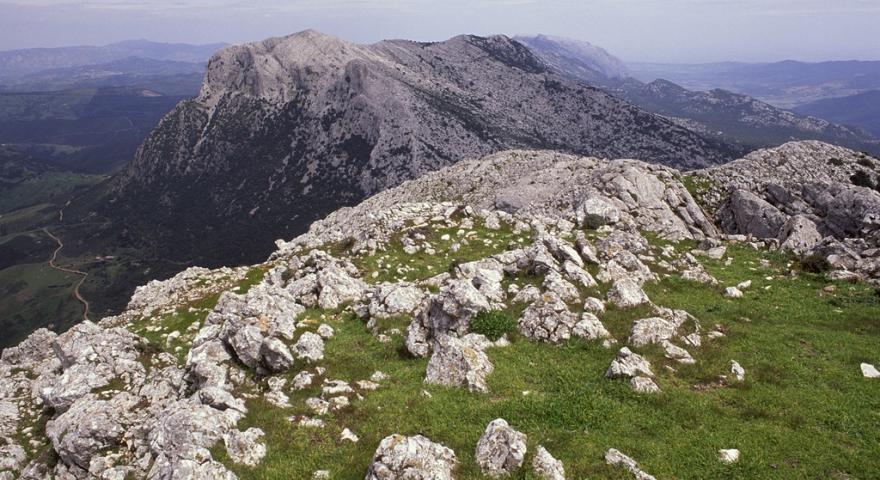 Le creste del Montalbo da punta Catirina (1100 m s.l.m.)