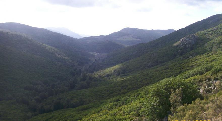 Panorama lungo il sentiero 101 da Genna Filixi
