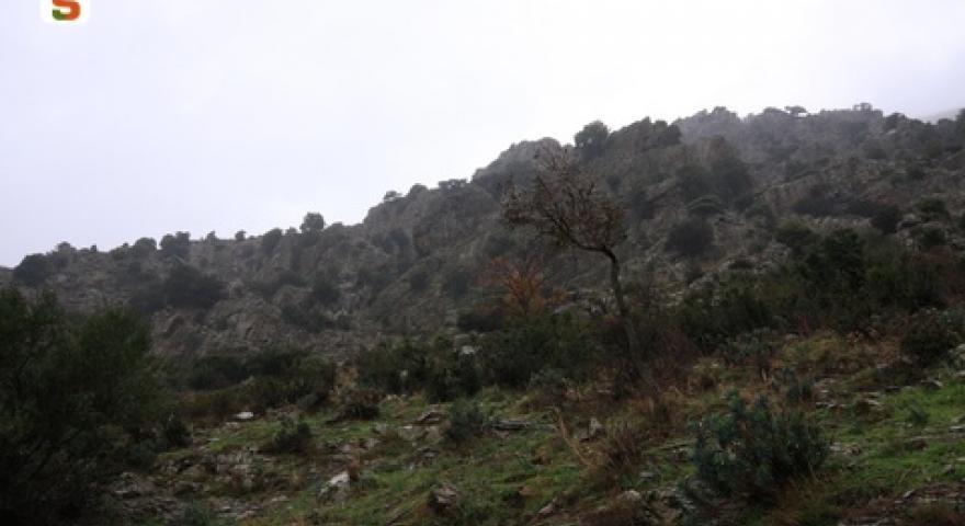 Aritzo, località Funtana Cungiada