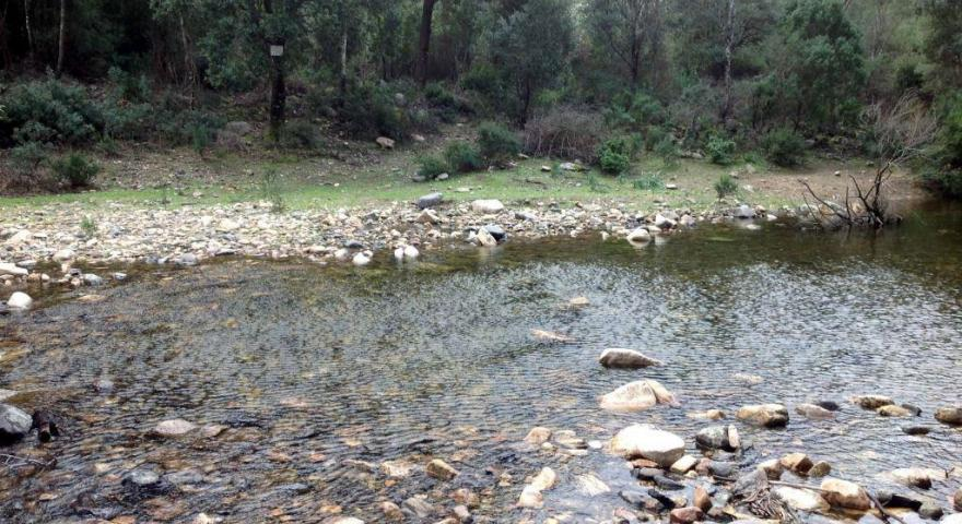 lungo il sentiero 201: località Is Canargius (torrente)