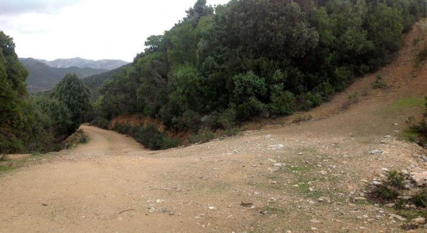 lungo il sentiero 201: panoramica su una cresta al km 7,350 da quota 315 m