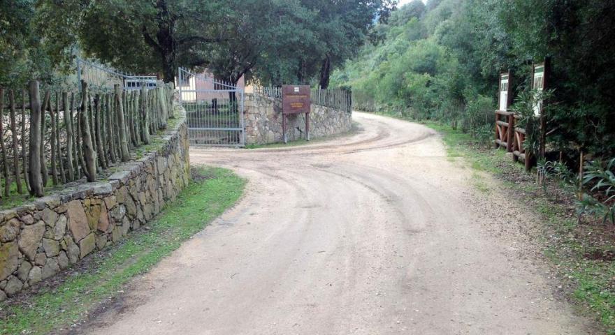 lungo il sentiero 201: arrivo alla casa forestale di Monte Nieddu