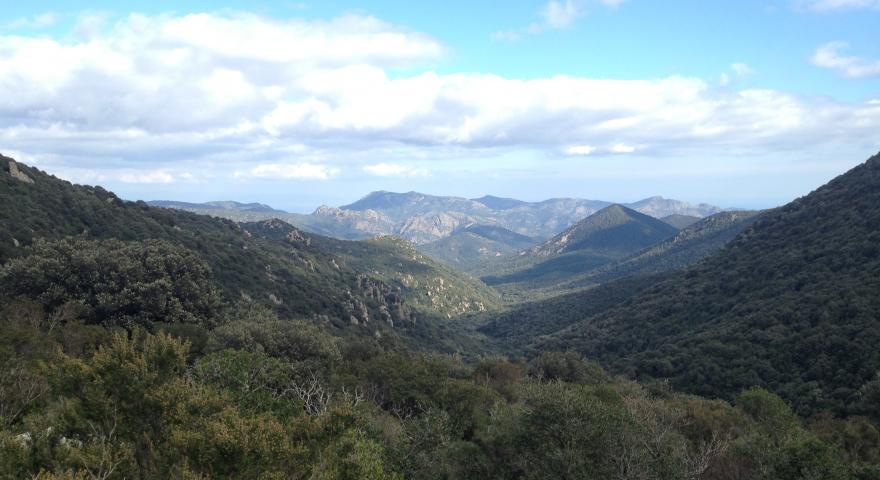 Panorama da S'arcu e' s'arena meta del sentiero 216