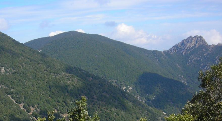 Monte Is Caravius, vista dal Monte Sa Mirra