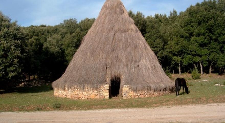 Laconi pinnetto in località Funtanamela