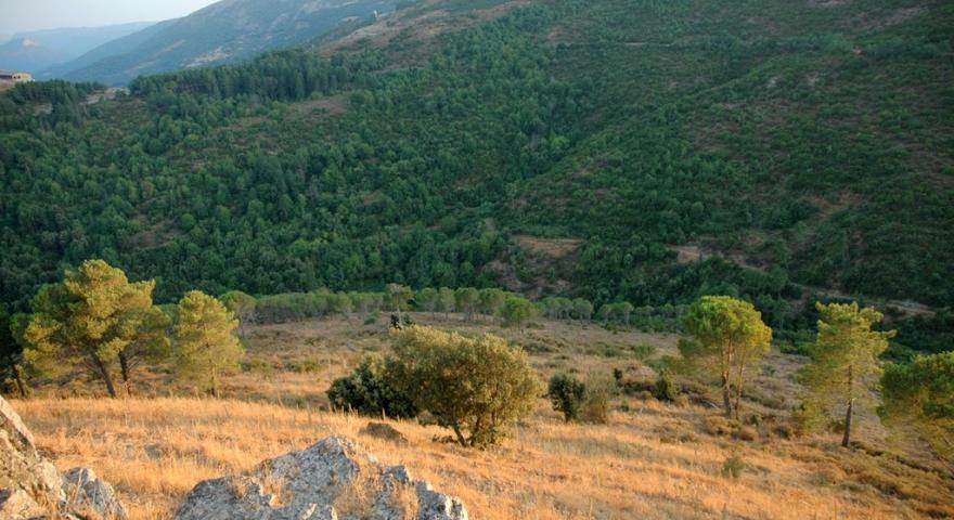 Texile, la valle