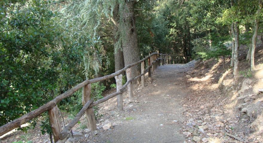 Sentiero T-112 Montarbu - San Sebastiano