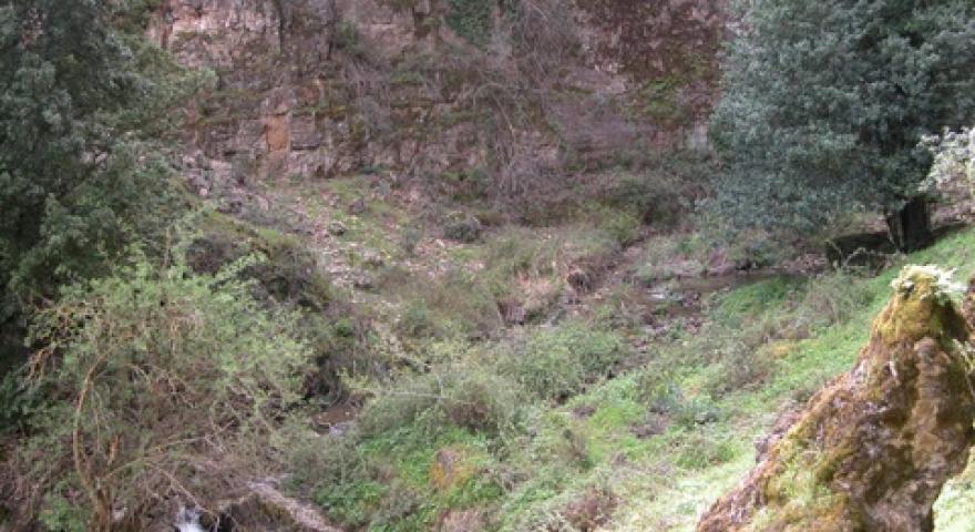 Seulo, vallata del Riu Su Semeccu