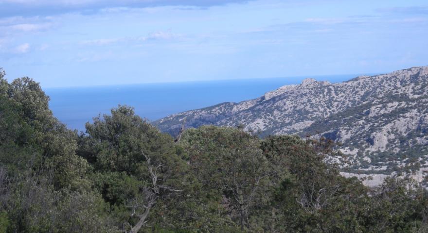 Vista panoramica del sentiero B- 181 nel territorio di Urzulei