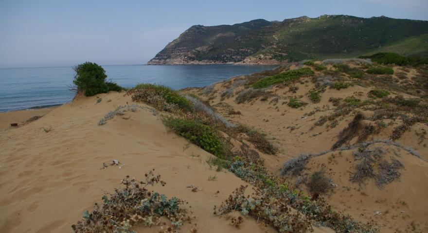 Arrivo dalle dune a spiaggia Porto Ferro