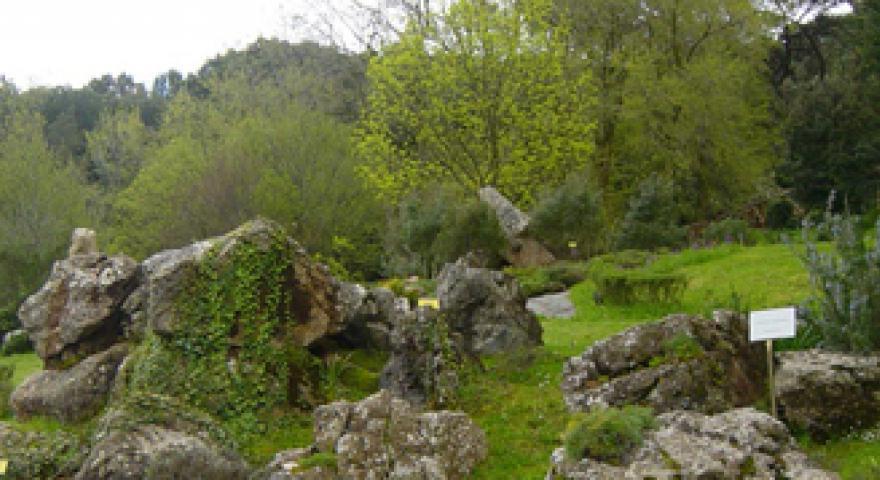 Giardino Monte Linasia