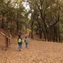 Bimbi nel Bosco di Monte Arrubio (Soleminis - CA)