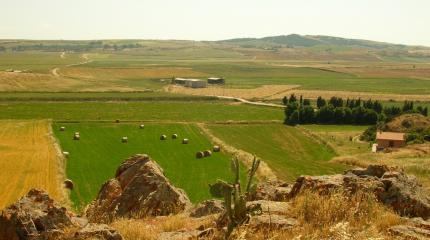 Panorama delle campagne di Ortacesus